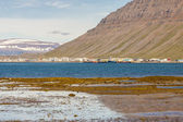 View on Isafjordur town - Iceland. — Foto de Stock
