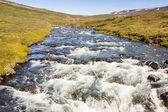 ручьёвые - исландия, вестфирдир. — Стоковое фото
