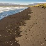 spiaggia nella città di saudarkrokur - Islanda — Foto Stock #18412863