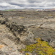 Stock Photo: Dimmuborgir area, volcanic landscape - Iceland.