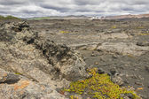 Dimmuborgir area, volcanic landscape - Iceland. — Stock Photo