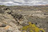 Dimmuborgir area, volcanic landscape - Iceland. — Stock Photo
