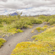 Trekking path in Myvatn area - Iceland. — Foto de Stock