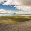 Myvatn lake. Iceland. — Stock Photo
