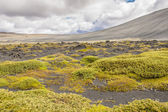 Volcanic landscape in Myvatn area - Iceland. — Stock Photo