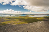 Myvatn lake. Iceland. — Stockfoto