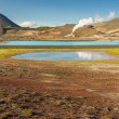 Hot springs in Myvatn area - Iceland. — Stock Photo