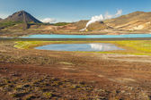 Hot springs in Myvatn area - Iceland. — Foto Stock