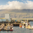 Harbour in  Djupivogur village - Iceland. — Stock Photo