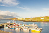 Fishing village - Djupivogur, Iceland. — Stock Photo