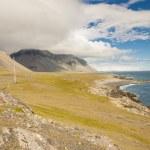 South coast of Iceland. Hvalnes. — Stock Photo #19700279