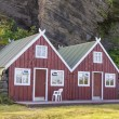 Two red wooden cottage - Vik, Iceland. — Foto de Stock