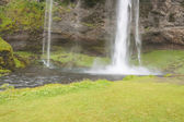 Big beauty Seljalandsfoss waterfall - Iceland. — Stock Photo