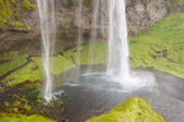 Seljalandsfoss waterfall - Iceland. — Stock Photo