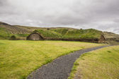 Tradycyjne islandzkie dom omszony dach - pjodveldisbaer — Zdjęcie stockowe