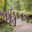 Wooden bridge in Sofiyivsky park - Uman, Ukraine. — Stock Photo #22005125