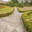 Pattern hedge in Sofiyivsky park - Uman, Ukraine, Europe. — Stock Photo