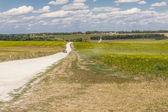 Gravel rural route - Ukraine, Europe. — ストック写真