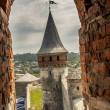 Old castle in Kamianets Podilskyi, Ukraine, Europe. — Stok fotoğraf