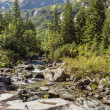 Mountain brook in Tatra Mountains — Stock Photo