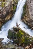 Mickiewicz waterfall in Tatra mountain. — Stock Photo