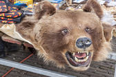 Bear pelt on street market - Schokland, Holland. — Stock Photo