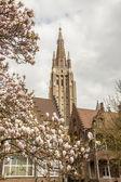 Tempo de primavera - nossa senhora igreja, brugge, Bélgica. — Fotografia Stock