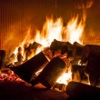 Fire from wood in industrial stove — Stock Photo #29699051