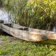 Old wooden canoe in Biskupin Museum - Poland. — Stock Photo