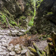 Ravine Cracow - Tatra National Park, Poland. — Foto de Stock