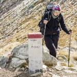 Active women on mountain path - Tatras Mountains. — Stock Photo #34690489