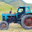 Old rusty tractor — Stock Photo #12842456
