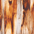 Old wooden boards — Stock Photo #29694027