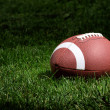 Stock Photo: Football in spotlight