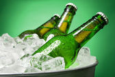 Green Beer Bottles — Stock Photo