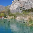 Pond in Whitewater Canyon - Stock Photo