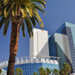 Palm trees and glass towers — Stock Photo #21909363