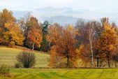 Autumny scenery — Stock Photo