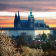 Colorful Prague gothic Castle (prazsky hrad) above the River Vltava in the morning, Czech Republic - Stock Photo