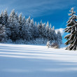 Wintry landscape scenery with flat county and woods — Stock Photo
