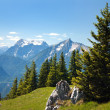 Blue mountains - view from Kaltmauer to blue mounts -Hhochschwab Alpen - Austria — Stock Photo #20583633