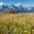 Stock Photo: View from Karnische Alpen or Alpi Carniche - Dolomiti - Italy