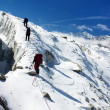 Group of climbers on rope on glacier - sunny day on mountain — Stock Photo