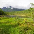 Stock Photo: Tajgin saymountains - buryati- russia