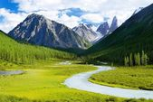 Altai mountain - savlo or szavlo valley - Russia — Stock Photo