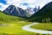Altai mountain - savlo or szavlo valley - Russia — Stock Photo