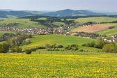 Panoramic view of Horni Lidec village - Carpathiam mountains - Czech Republic — Stock Photo