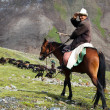 Stock Photo: 10th of October 2013 - stockrider with flock in Alay mountains on pastureland - life in Kyrgyzstan