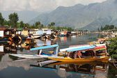 KASHMIR, INDIA - AUG 3 Shikara boats on Dal Lake with houseboats in Srinagar - Shikara is a small boat used for transportation in the Dal lake - 3rd of August 2013, Srinagar, Jammu and Kashmir, India — Stock Photo