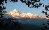 Evening view of mount Dhaulagiri - Nepal — Stock Photo